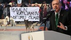 Erdoğan'dan Boğaziçi Üniversitesi tepkisi: Bu terörist öğrencileri bulup...