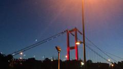 İstanbul'da 15 Temmuz gecesi duygulandıran ay yıldız görüntüsü