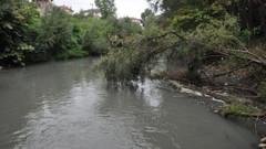 Bartın Irmağı siyaha büründü