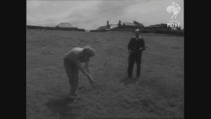 1954 tarihli videodaki kadın zombi mi?