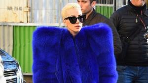 Lady Gaga'nın kürkü servet değerinde