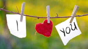 Aşkınızın geri kalan ömrünü kurtarmak için bugün ilk gününüz!