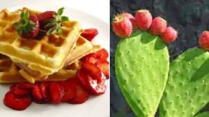 Waffle meyveli kaktöş oldu sosyal medya isyan etti