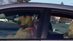 Araçta sahibini beklemekten sıkılan köpek bakın ne yaptı?