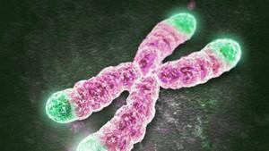 Telomer nedir? Telomer tedavisi nasıl olur?
