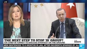 Erdoğan'ın yeni başdanışmanı Gülnur Aybet kimdir?