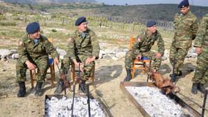 Yunan Askerler Eşek Adası'nda kuzu çevirdiler!
