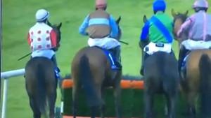 Atını yumruklayan İrlandalı jokey tepki topladı