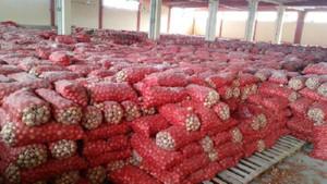 Gölbaşı'ndaki depoda 1300 ton kuru soğan çıktı