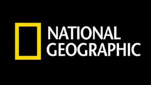 National Geographic yılın en iyi fotoğraflarını seçti
