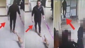 Sabah ve Hürriyet'in acil servisteki kedi kavgası