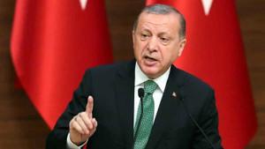 ABD ekranlarında Erdoğan'a dönerci ustası benzetmesi