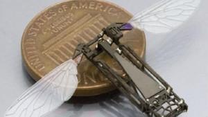 Black Mirror dizisindeki robot arılar gerçek oluyor