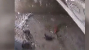 Kazaya bakarken köprüden düştü