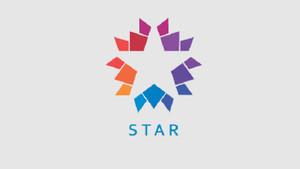 Star TV'nin o dizisi final yaptı!