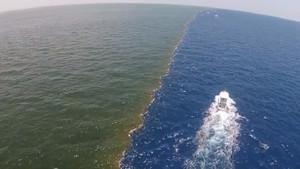 Alaska Körfezi'nde birbirine karışmayan suların sırrı ne?