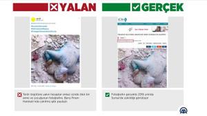 Barış Pınarı Harekatı'yla ilgili skandal yalanlar
