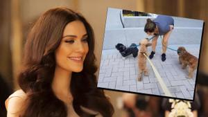Bergüzar Korel'den temizlikçi ablası Zeynep Korel'e büyük şok!