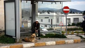 Sahibinin terk ettiği köpek 1 yıldır dolmuş durağından ayrılmıyor