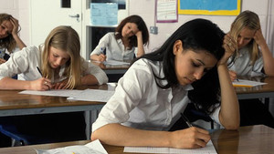 Genç kız sınav kağıdına helal ete karşıyım yazdı, sınavı iptal edildi