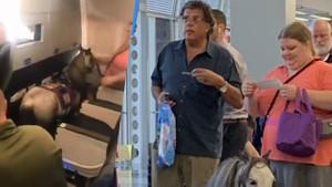 Atıyla birlikte uçağa binen kadın görenleri şaşkına çevirdi!