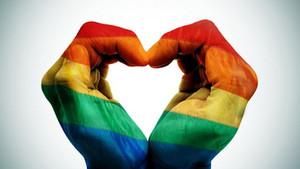 LGBTI terimleri ne anlama geliyor?