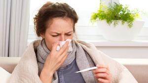 Domuz Gribi nedir? H1N1 virüsü nasıl bulaşır?