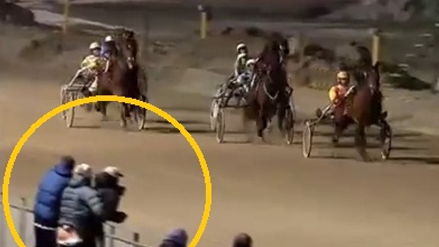 At yarışında seks skandalı! Herkesin önünde...