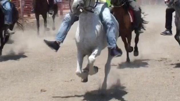 At yarışlarında korkunç kaza: Jokey böyle öldü