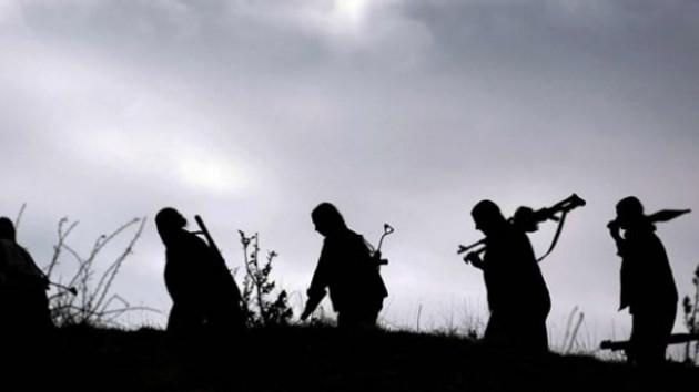 Dışişleri Bakanlığı PKK ve YPG'yi Terör Örgütü Olarak Görmediklerini Açıkladı!