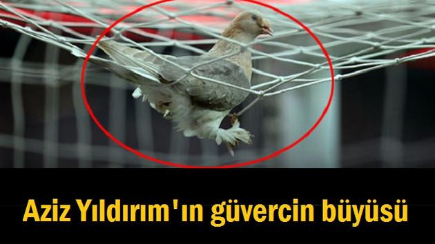 ROK'tan şok iddia: Beşiktaş stadında güvercin büyüsü..