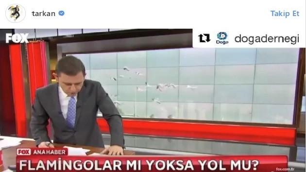 Tarkan, Fatih Portakal'ın flamingo eleştirisini paylaştı