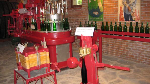 Atatürk Orman Çiftliği'nde 60 bin şişe şarap neden depoda bekletiliyor?