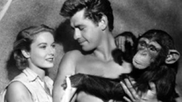 Tarzan'ın yakın dostu olan maymunun gerçek ismi nedir? Hadi ipucu sorusu