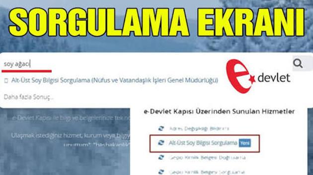 E-devlet çöktü mü? Soyağacı sorguları patlayınca, site kilitlendi