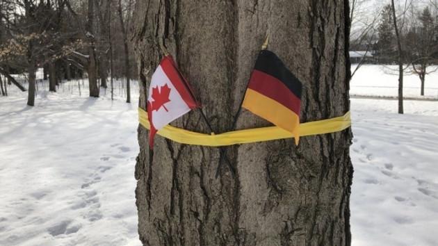 Kralı karşılama töreninde Belçika yerine Alman bayrağı skandalı!