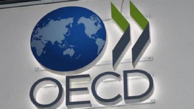 OECD Türkiye için 2019 büyüme tahminini yüzde 0,5'e çekti