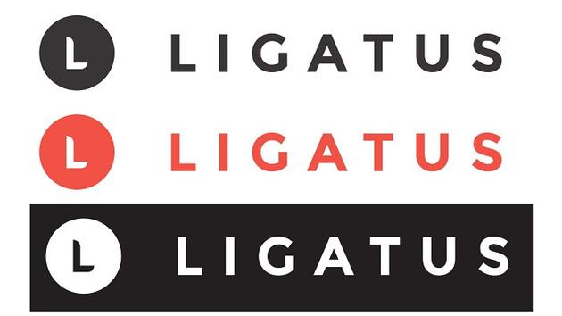 Ligatus Türkiye'deki faaliyetlerini durduruyor