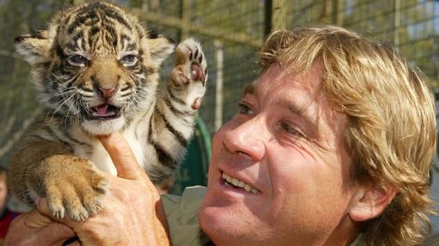 Steve Irwin kimdir? Nasıl hayatını kaybetti? Steve Irwin neden Doodle oldu?