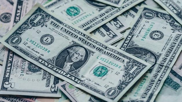 Merkez Bankasından son dakika Dolar açıklaması