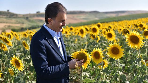 AKP Sözcüsü Çelik'ten şaşırtan İmamoğlu paylaşımı