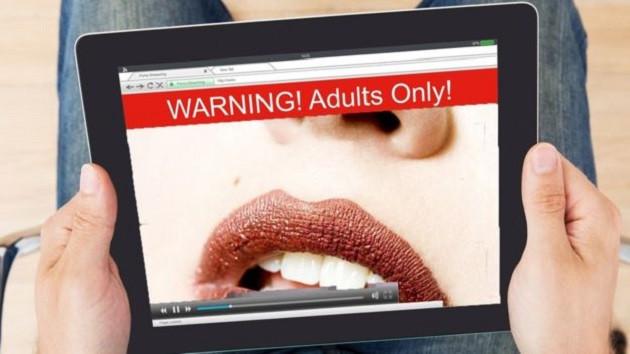 Porno hala internetin itici gücü mü?