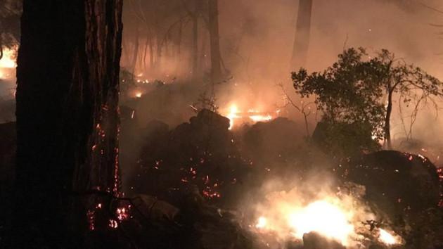 Türk Hava Kurumu: Uçaklarımız yangına müdahaleye hazırdı gerek yok dendi
