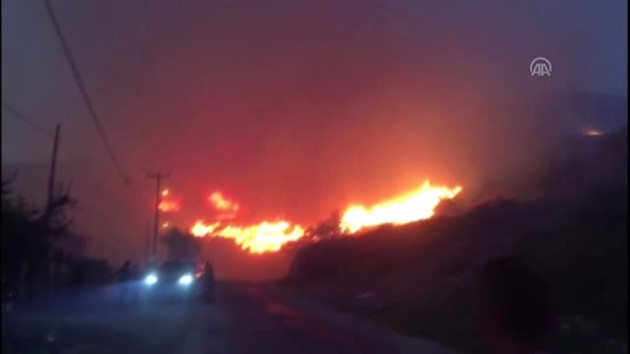 Marmara Adası'nda yeniden yangın çıktı