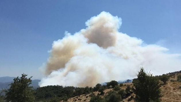Mehmet Çelik: Yangınlar tesadüf değil