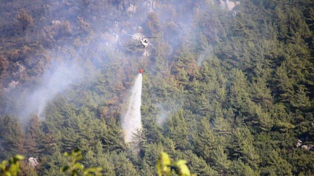Tarım ve Orman Bakanlığı bugün çıkan yangılara ilişkin açıklama yaptı