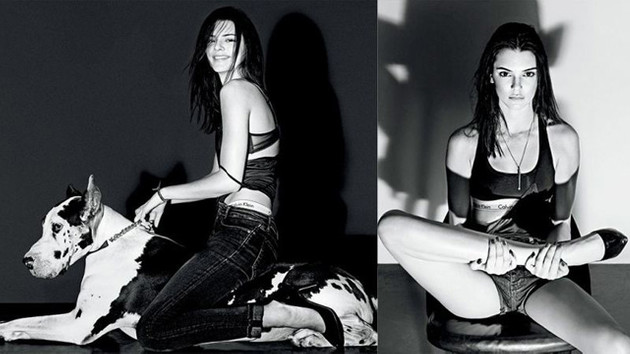 Kendal Jenner V Magazine'de!
