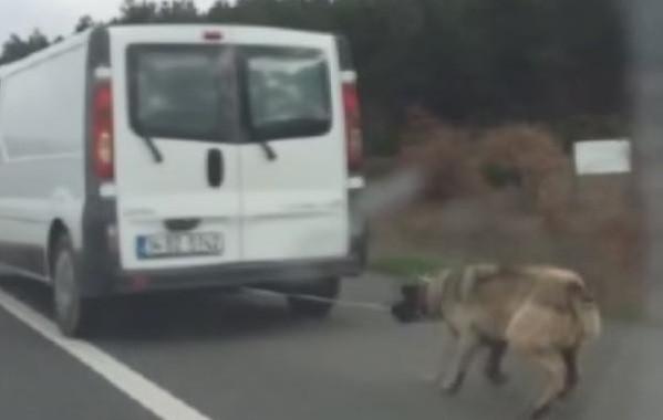 Köpeğini arabaya bağlayıp sürükleyensürücüden skandal görüntülere savunma