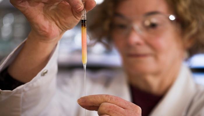 Dünyanın en eski renk molekülleri bulundu