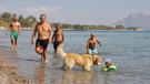 Datça'ya sarıca yaz geldi plajlar doldu taştı
